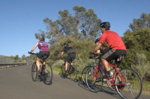 Event rides, triathlons, or riding with the family, look no further than the Sirrus