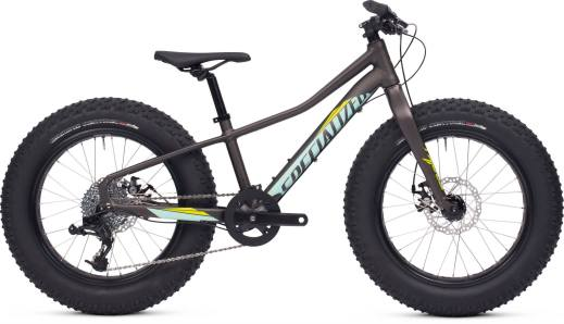 2015 Specialized Fatboy 20 Charcoal / Teal / Hyper Green